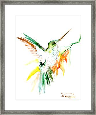 Hummingbird Green Orange Red Framed Print