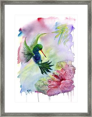 Hummingbird Happiness Framed Print by Marilyn Smith