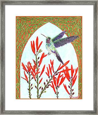 Hummingbird In Opening Framed Print by Lise Winne