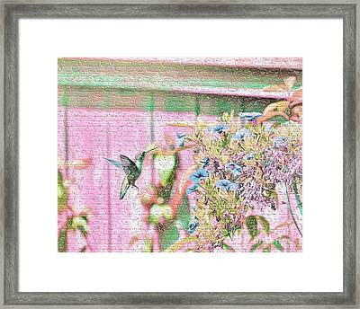 Hummingbird In The Garden Framed Print