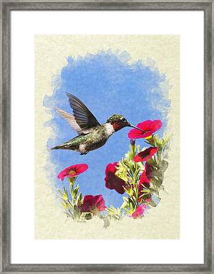 Hummingbird Moment In Time Blank Note Card Framed Print by Christina Rollo