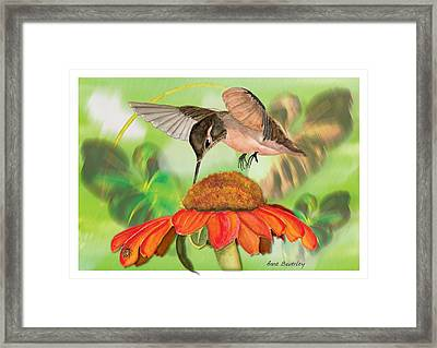 Framed Print featuring the painting Hummingbird On Flower by Anne Beverley-Stamps