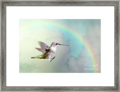 Framed Print featuring the photograph Hummingbird Under Rainbow by Bonnie Barry