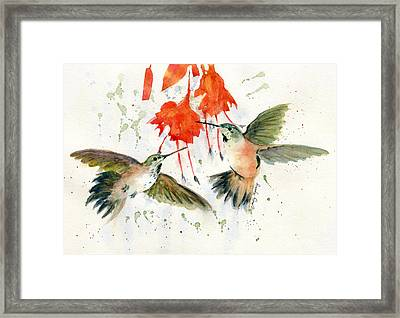 Hummingbird Watercolor Framed Print by Melly Terpening