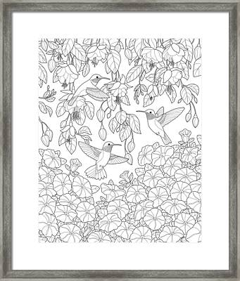 Hummingbirds And Flowers Coloring Page Framed Print by Crista Forest