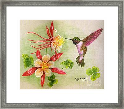 Hummingbird's Delight Framed Print by Judy Filarecki