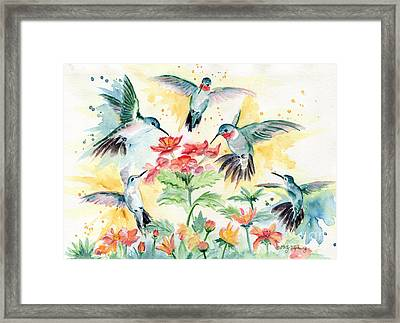 Hummingbirds Party Framed Print by Melly Terpening