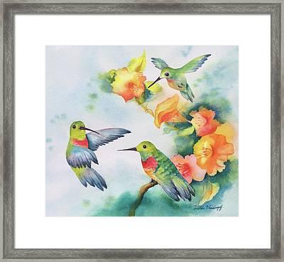 Hummingbirds With Orange Flowers Framed Print