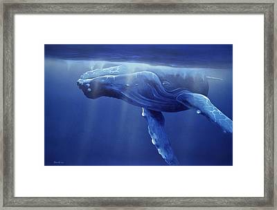 Humpback Portrait Framed Print