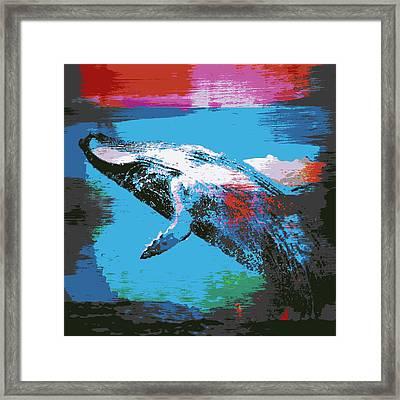 Humpback Wale V1 Framed Print by Brandi Fitzgerald