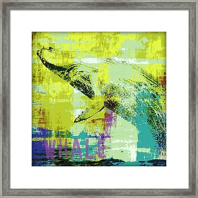 Humpback Whale V2 Framed Print by Brandi Fitzgerald