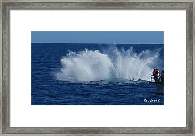 Humpback Whale Breaching Close To Boat 23 Image 3 Of 4 Framed Print