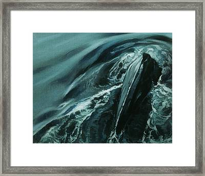 Humpback Whale IIi Framed Print by Heather Theurer