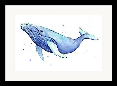 Humpback Framed Prints
