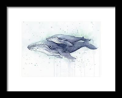 Animal Mother Framed Prints