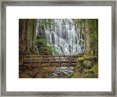 Hundred Acre Woods Framed Print by Richard Jones