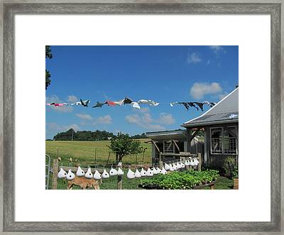 Hung Out To Dry Framed Print by Renee Holder