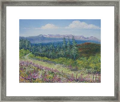Framed Print featuring the painting Summer Flowers On Hungry Hill by Stanza Widen