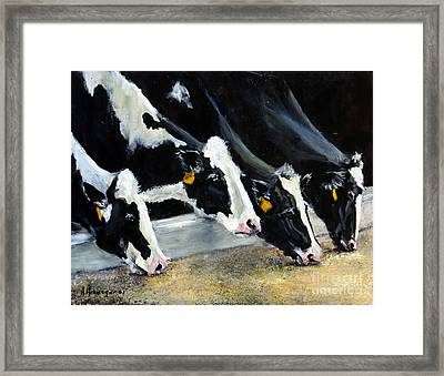 Hungry Holsteins Framed Print