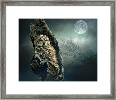 Hunter's Moon Framed Print