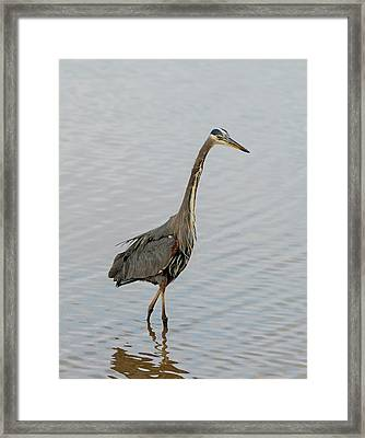 Hunting And Fishing Framed Print by Loree Johnson