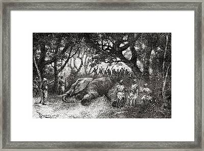 Hunting Elephants In Central Africa In Framed Print by Vintage Design Pics