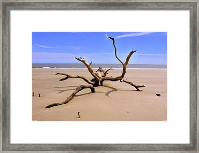 Hunting Island Beach Beaufort Sc Framed Print