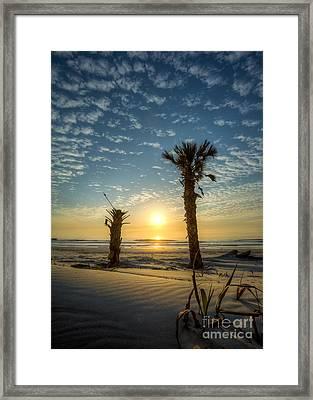 Hunting Island State Park Beach Sunrise Framed Print by Dustin K Ryan