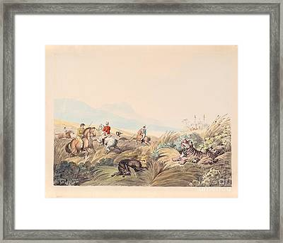 Hunting Scene With Tiger And Boar Framed Print by MotionAge Designs