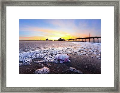 Huntington Foam Shell Framed Print