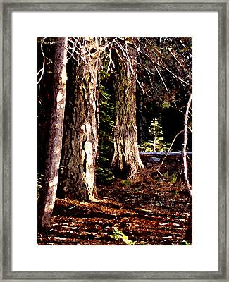 Framed Print featuring the painting Huntington Trees by Larry Darnell