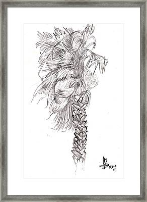 Framed Print featuring the drawing Hurrracane Winds by Fanny Diaz