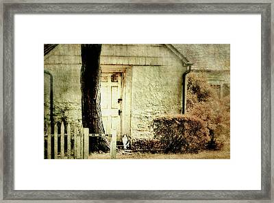 Hurry Home Framed Print by Diana Angstadt