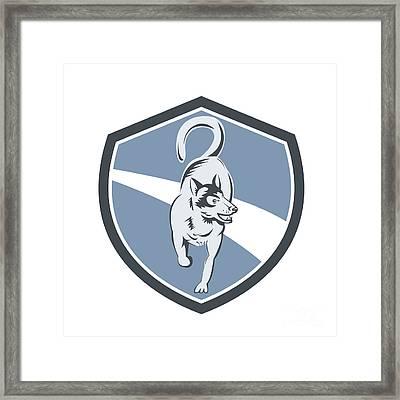 Husky Dog Crest Retro Framed Print by Aloysius Patrimonio