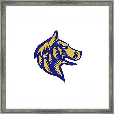 Husky Dog Head Woodcut Framed Print by Aloysius Patrimonio