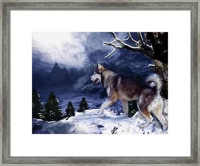 Husky - Mountain Spirit Framed Print by Carol Cavalaris