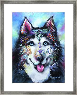 Husky Framed Print by Patricia Lintner