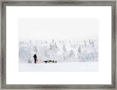 Framed Print featuring the photograph Husky Safari by Delphimages Photo Creations