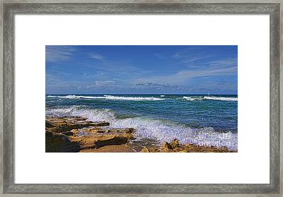 Hutchinson Island Florida Framed Print by Olga Hamilton