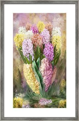 Hyacinth In Hyacinth Vase 2 Framed Print by Carol Cavalaris