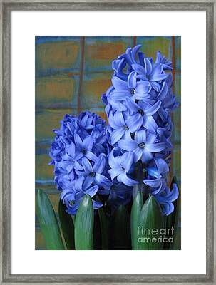 Framed Print featuring the photograph Hyacinths by Patricia Januszkiewicz