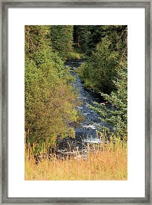 Hyalite Creek Overlook Framed Print