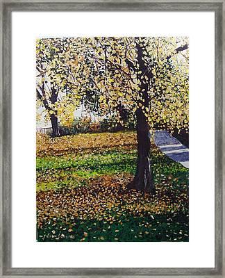Hyde Park London Framed Print by Sharon  De Vore