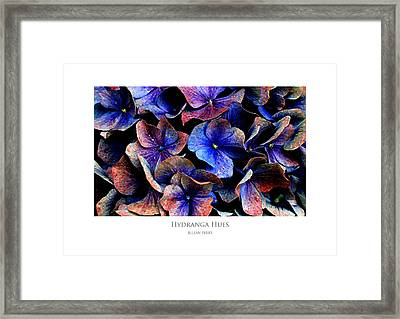 Framed Print featuring the digital art Hydranga Hues by Julian Perry