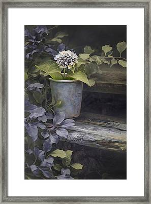 Framed Print featuring the mixed media Hydrangea Eve by Robin-Lee Vieira