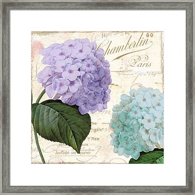 Hydrangea Hortensia Framed Print by Mindy Sommers