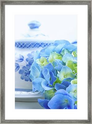 Hydrangea Memories Framed Print