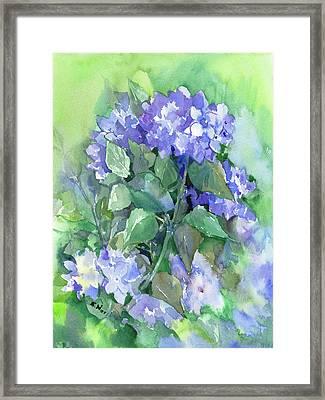 Hydrangea Framed Print by Suren Nersisyan
