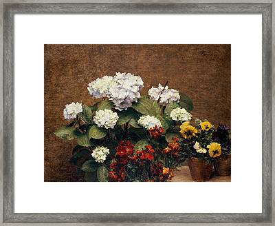 Hydrangeas And Wallflowers And Two Pots Of Pansies Framed Print by Henri Jean Fantin-Latour