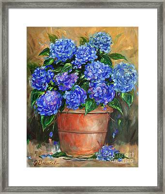 Hydrangeas In Pot Framed Print by Jennifer Beaudet